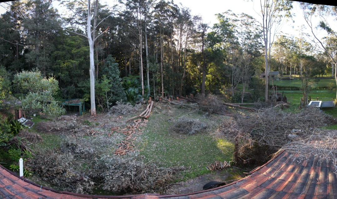 Backyard after chainsaw pruning 24th August 2012 from rooftop