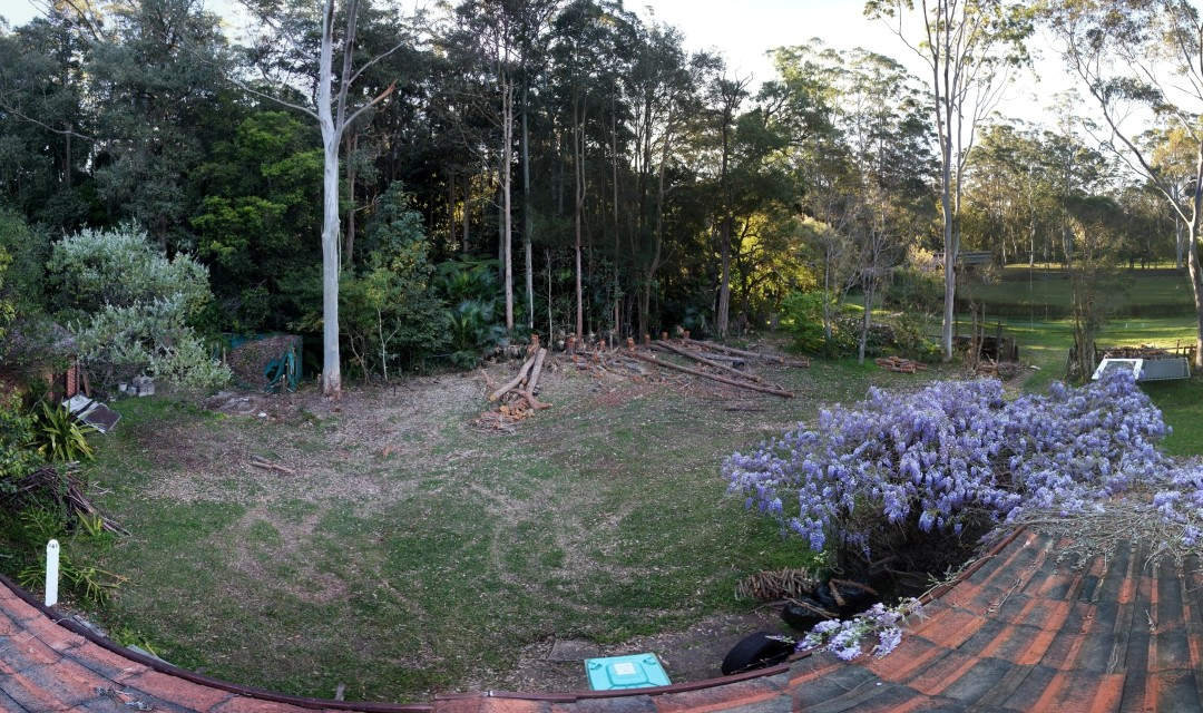 Backyard after chainsaw pruning 14th September 2012 from rooftop